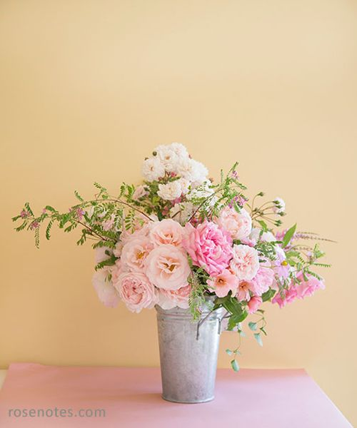 Pink-rose-in-bucket