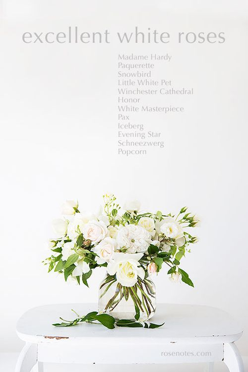 White-roses-recommended