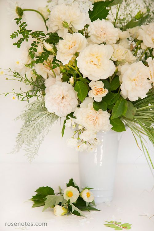 White-roses-1a