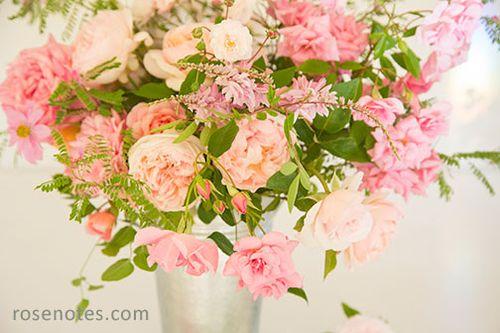 Lovely-pinks