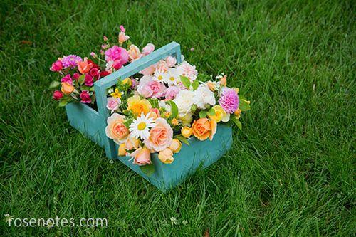 Basket-of-roses