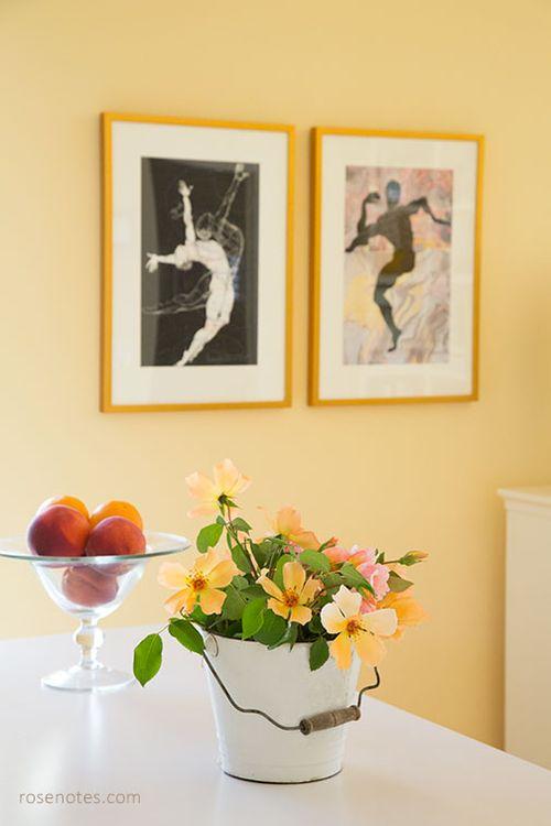 Bucket-of-mrs-oakley-fisher-roses