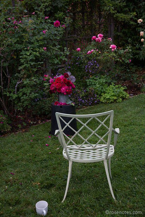 Garden-shot