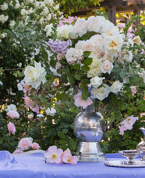 ARS-white-roses