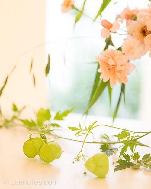 Flower-gift-bucket-6