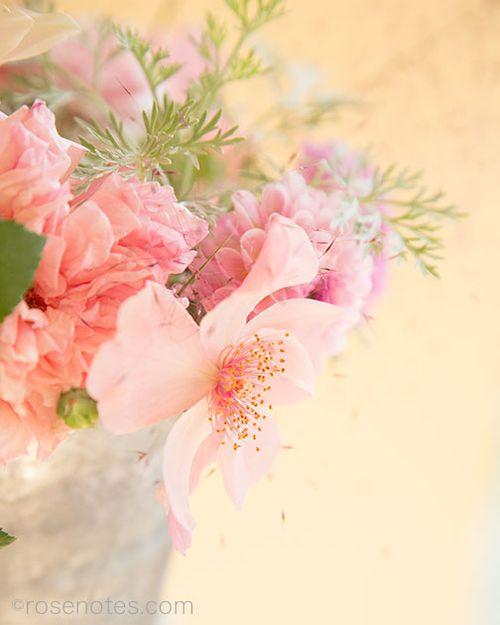 Flower-gift-bucket-8