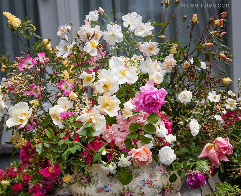 Celebration-of-old-roses-bouquet