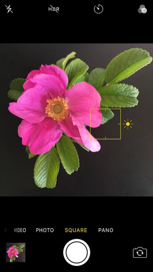 Iphone_focus_exposure_camera_feature