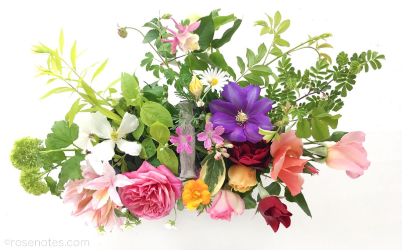Mixed_flowers_white_background