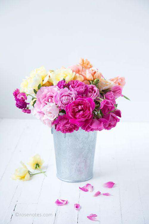 Bucket-of-multi-roses