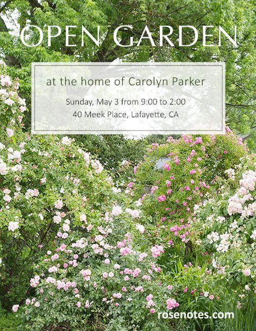Open-garden-15-blog