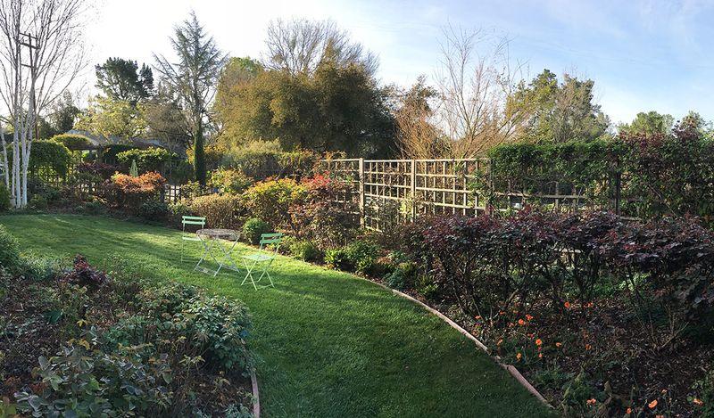 Panorama-carolyn-parker-garden