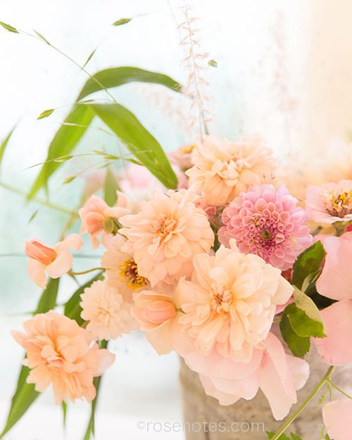 Flower-gift-bucket-4