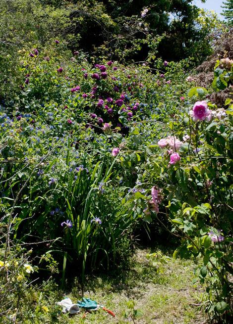 Vintage-gardens