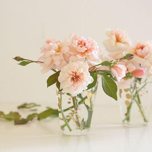 Perle-d'or-rose