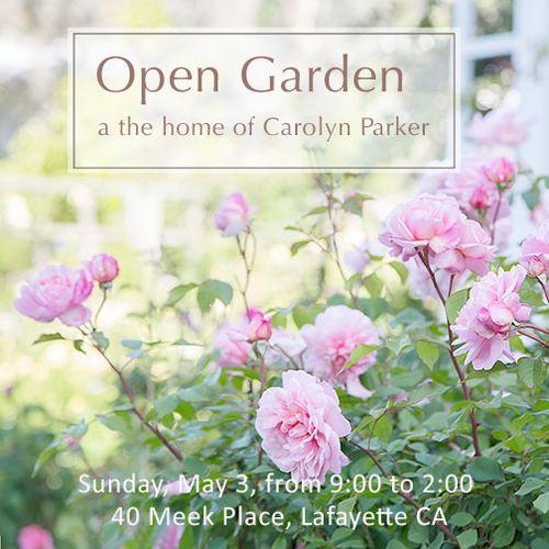 Open-garden-7'