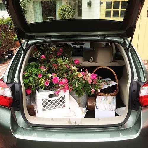 Car-ready-to-go